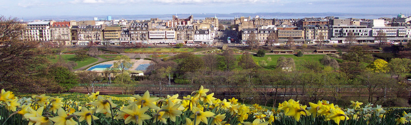 Princes Street and New Town seen through the spring-time daffodils planted at Edinburgh Castle