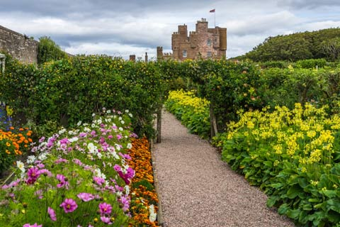A path leads through the colourful plants and hedges of the walled garden to reach the Castle of Mey