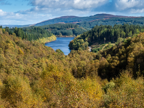 Loch Drunkie seen through the Queen Elizabeth Forest from the Dukes Pass