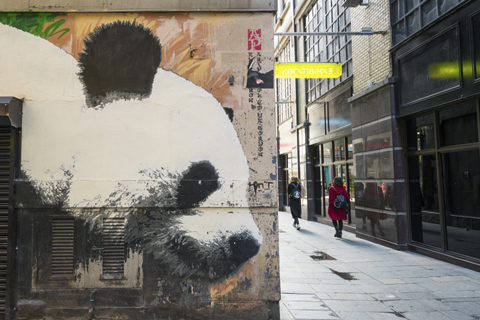 The head of a Giant Panda is painted on the corner of a building