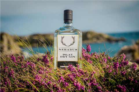 Nerabus Gin bottle posed amongst purple heather