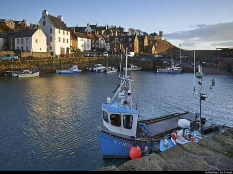Looking over Crail harbour
