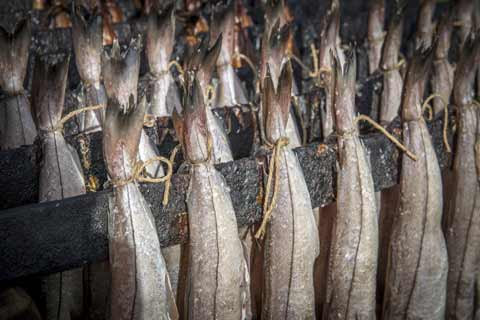 Hung pairs of Arbroath Smokies being cooked and smoked