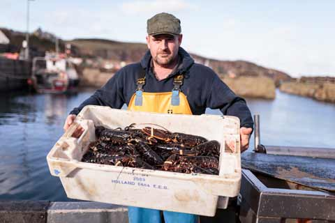 A fisherman displays his catch of lobsters